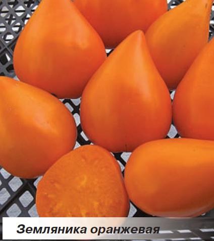 Красивые, сладкие помидорчики сорта ЗЕМЛЯНИКА ОРАНЖЕВАЯ