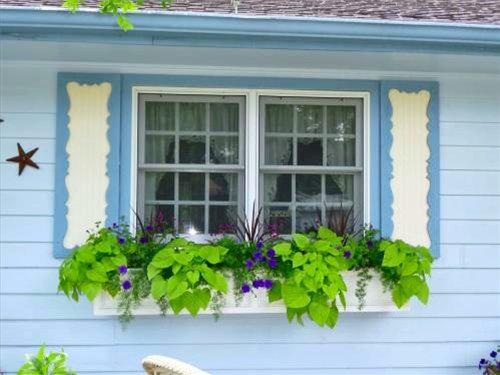 красивые окна снаружи фото